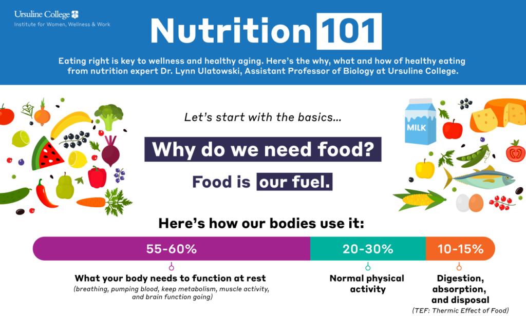 Nutrition 101 Infographic